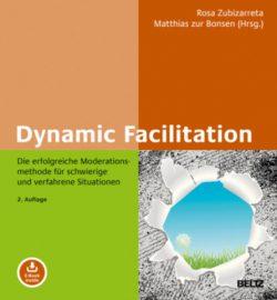 Dynamic facilitation Buch-Cover